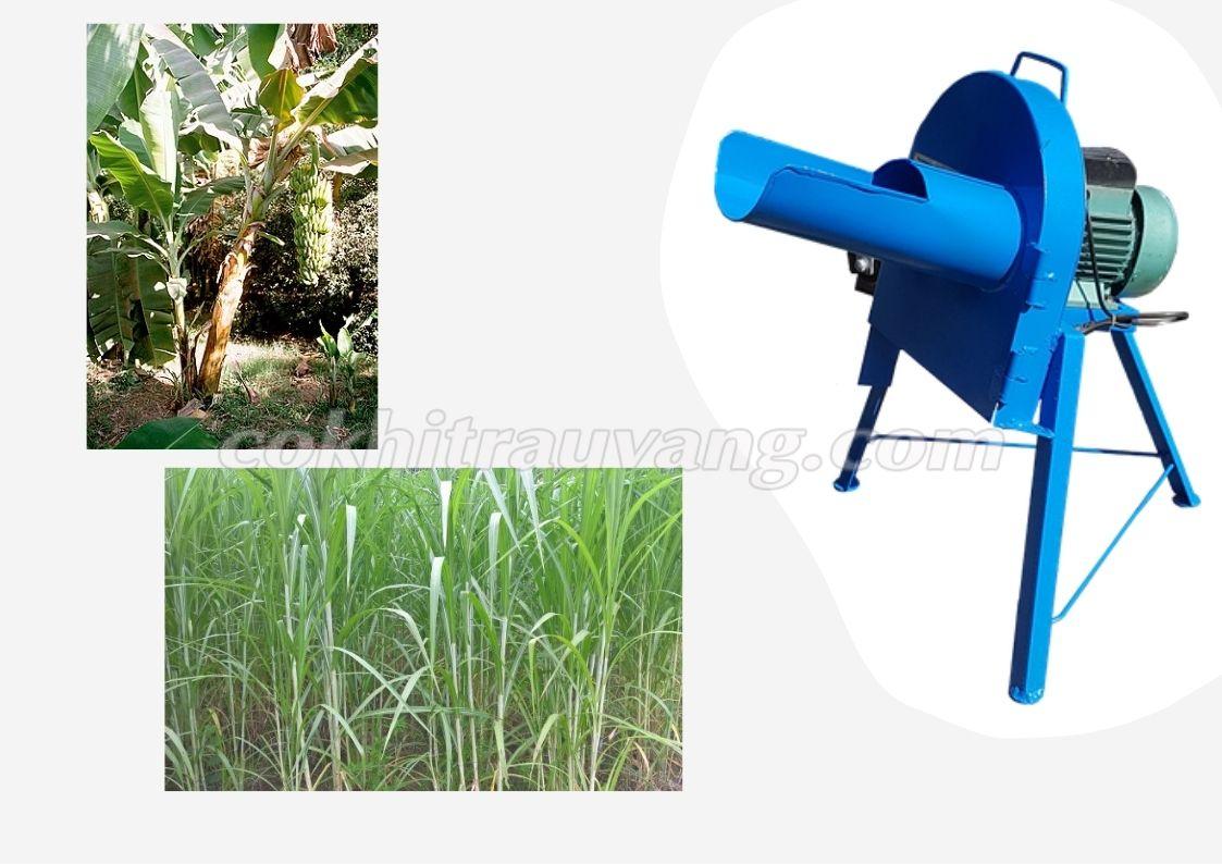 máy băm cỏ nghiền